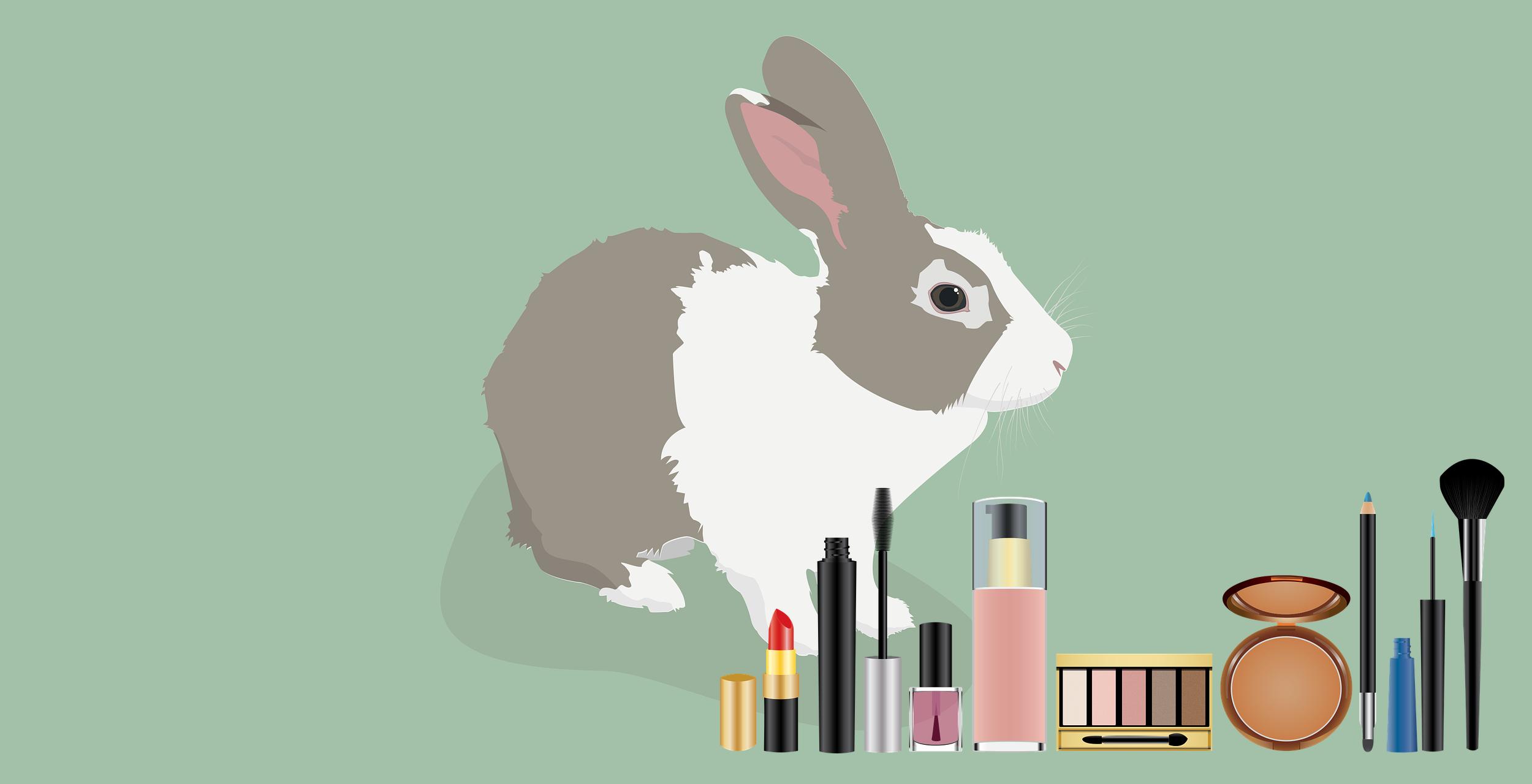 animal testing version 1.png