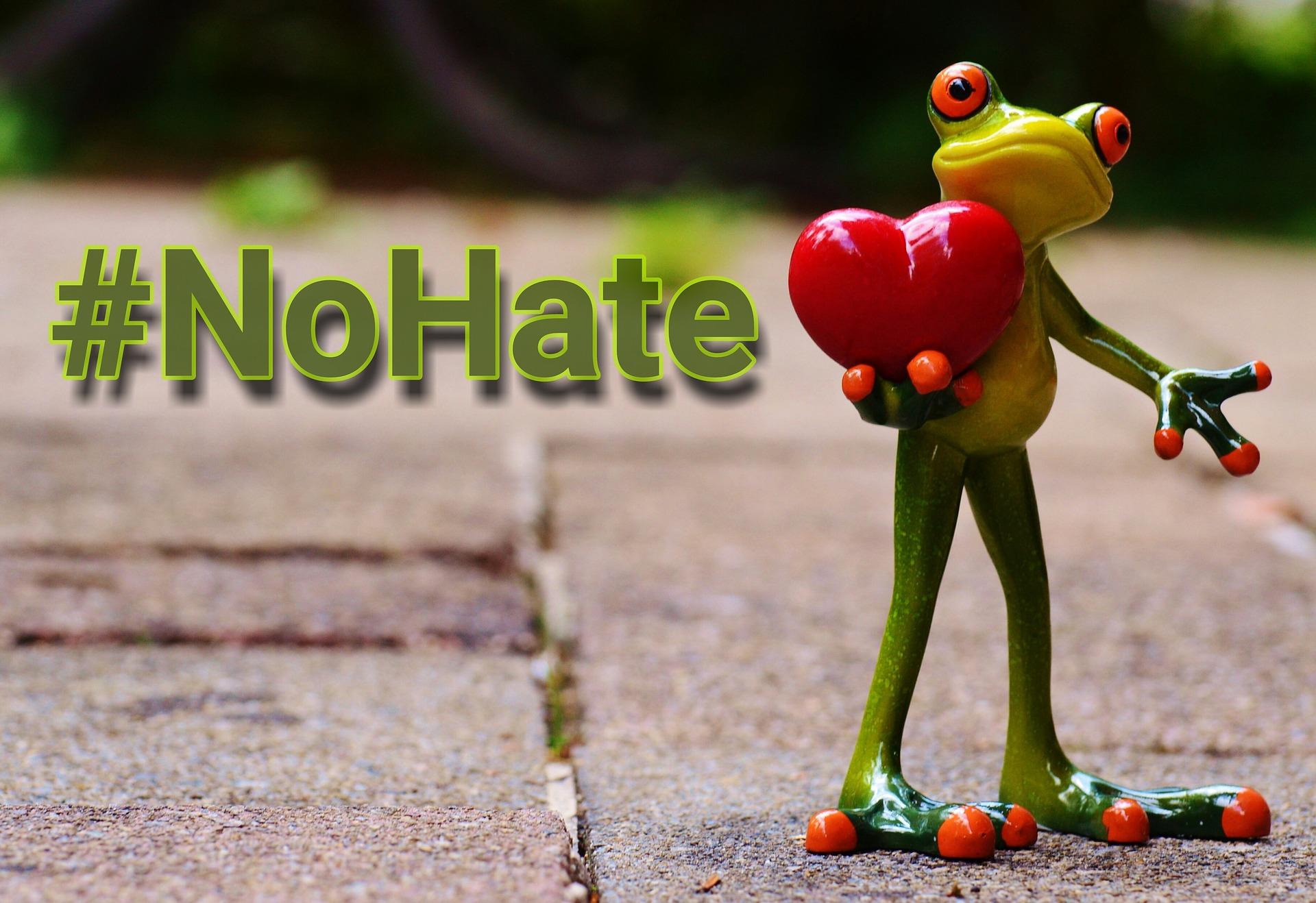 no hate version 2.jpg